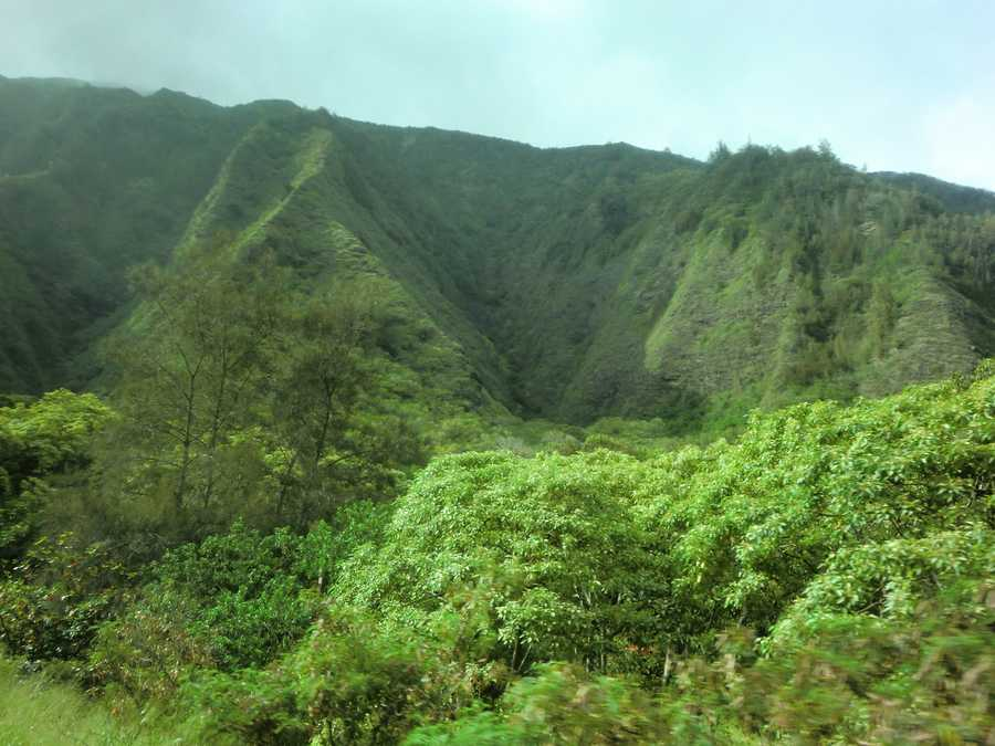 The Iao Valley State Park has short walks, botanical gardens and lots of history.