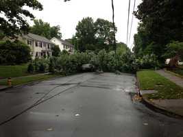 Damage on Oaklawn in Winston-Salem (thanks, Mike Leach)