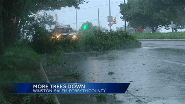 Trees down in Forsyth County