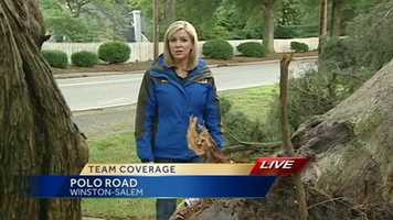 Kimberly beside a downed tree in Winston-Salem.