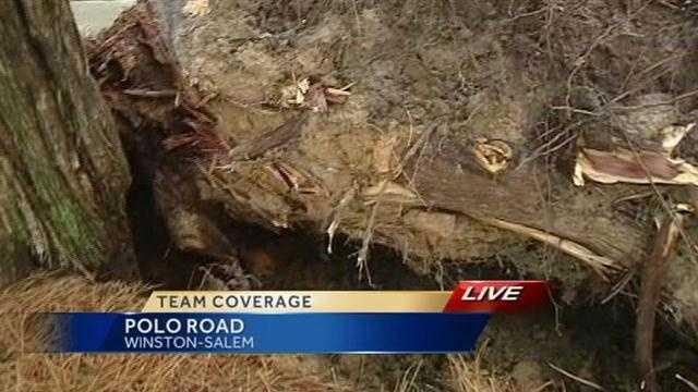 Polo Road damage