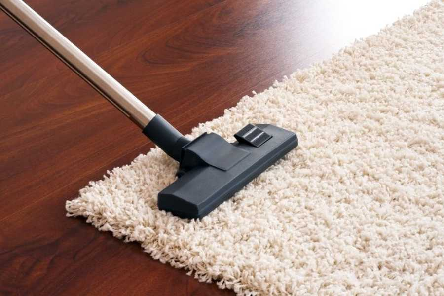 8. Your Vacuum Cleaner or Bag. You can throw out the bag of your vacuum cleaner, but the Science Channel says mold, bacteria and fecal matter can still be found in the vacuum cleaner's brushes.