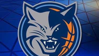 Charlotte Bobcats logo