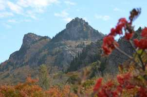 More Grandfather Mountain