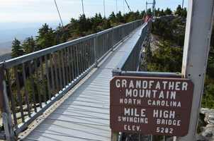 Swinging Bridge at Grandfather Mountain