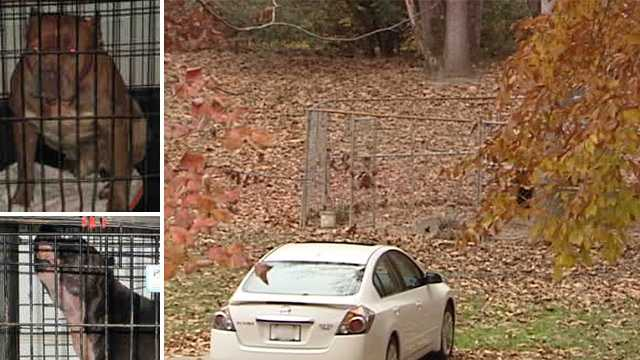 Left: Pit bulls euthanized by Forsyth County Animal Control. Right: Kennel located beside home.