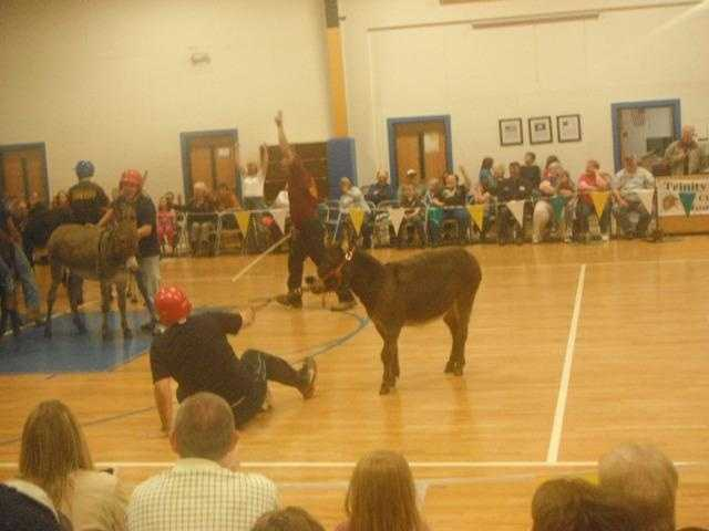 19. Austin finally met his match playing donkey basketball at a Virginia fundraiser.