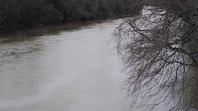 Dan River spill
