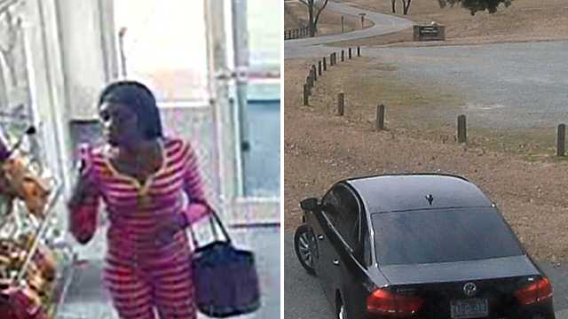 Surveillance images in Alamance County break-in and credit card fraud case