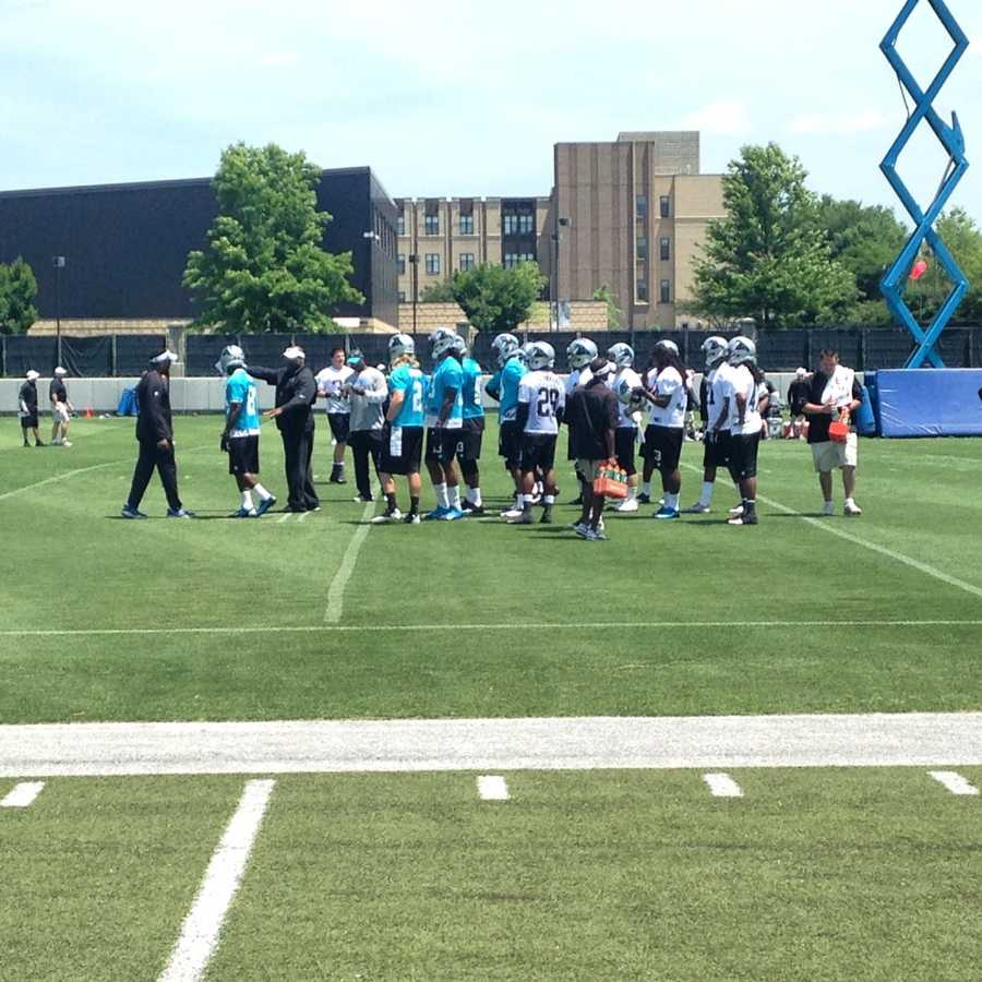 Carolina Panthers Rookie Minicamp in Charlotte