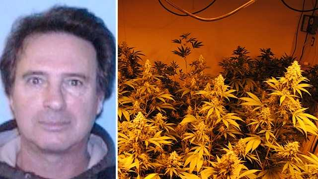 Left: Abraham Shaki. Right: Marijuana found inside warehouse.