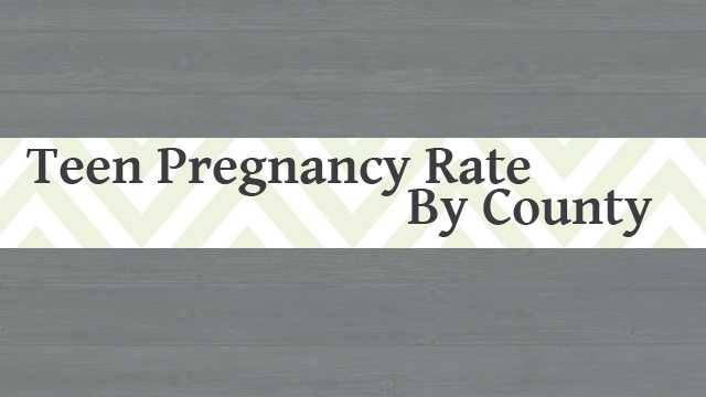teen pregnancy in south carolina This publication examines in detail the problem of teenage pregnancy in south carolina following the executive summary and a listing of eight recommendations based on the report, chapter 1 presents tables of selected vital statistics related to teen pregnancy in south carolina.