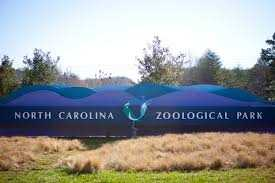 Located just south of Asheboro, the North Carolina Zoo is seated on a 2,200-acre tract of land in the Uwharrie Mountains. Zoos introduce people to animals and the Zoo is home to approximately 1,600 individual specimens representing more than 225 species.