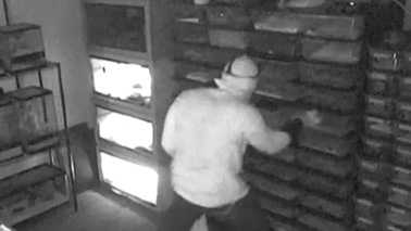Surveillance image of snake theft suspect