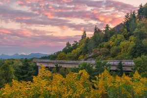 Sept. 30: Bright yellow goldenrods coordinate pleasantly with the early changing leaves near the Linn Cove Viaduct on the Blue Ridge Parkway. (Photo by Skip Sickler).