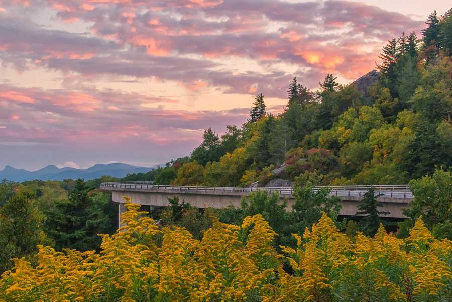 Sept. 30:Bright yellow goldenrods coordinate pleasantly with the earlychanging leaves near the Linn Cove Viaduct on the Blue Ridge Parkway. (Photo by Skip Sickler).