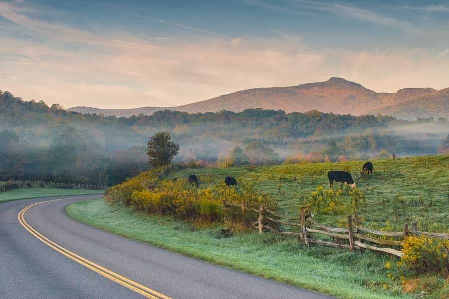 Oct. 4: Morning fog lifts to reveal shades of autumn color on the Blue Ridge Parkway near the Price Park Picnic Area at milepost 296.5. (Photo by Skip Sickler)