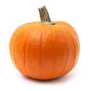 15, If your pumpkin hasn't been carved, don't leave it outside. It can freeze and create a mess.