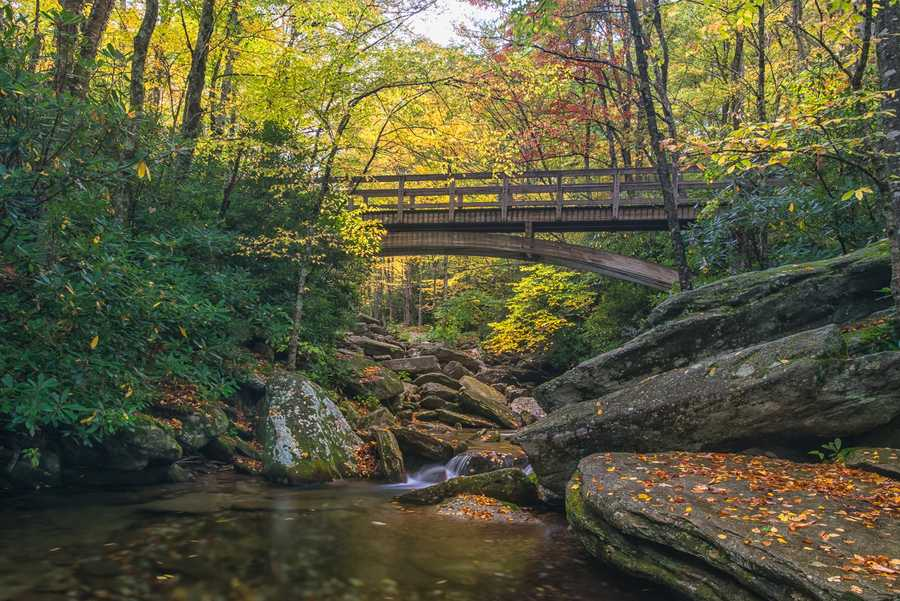 Oct. 8: A bridge over the Boone Fork Creek transports hikers to a wonderland offall color along the Tanawha Trail outside Linville, N.C. (Photo by SkipSickler)