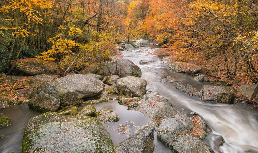 Oct. 15: Downstream from the Mill Pond in Banner Elk, runoff from Tuesday's stormsgushes among the still-colorful trees. (Photo by Skip Sickler)At Grandfather Mountain, staff recorded 4.22 inches of rain accumulationat the base of the mountain Wednesday morning.