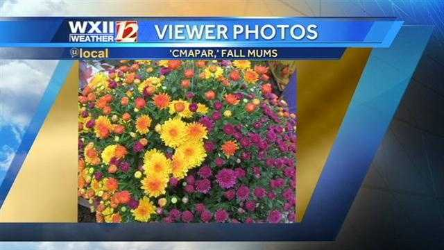 We hope you enjoyed the photos! Make sure to upload your fall color photos to our 'u local' page so we can show them on air!