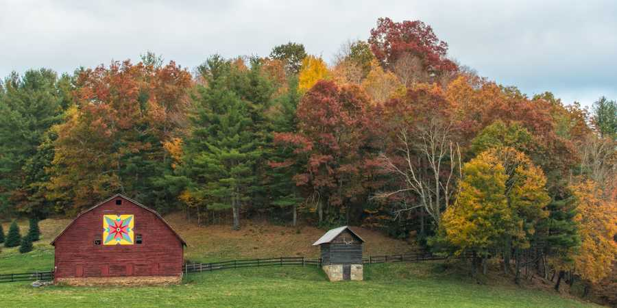 Oct. 23:Fall colors envelop a barn on U.S. 221 between Crossnore and Linville Falls in Avery County, N.C. (Photo by Skip Sickler)Visitors to the area should expect to see plenty of color along U.S. 221and N.C. 181 headed up the mountain this weekend, when pleasanttemperatures and sunshine are on tap.