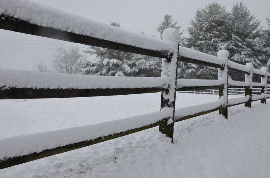 Alleghany County was among the areas receiving snow Saturday morning. Check out these photos by WXII's William Bottomley.