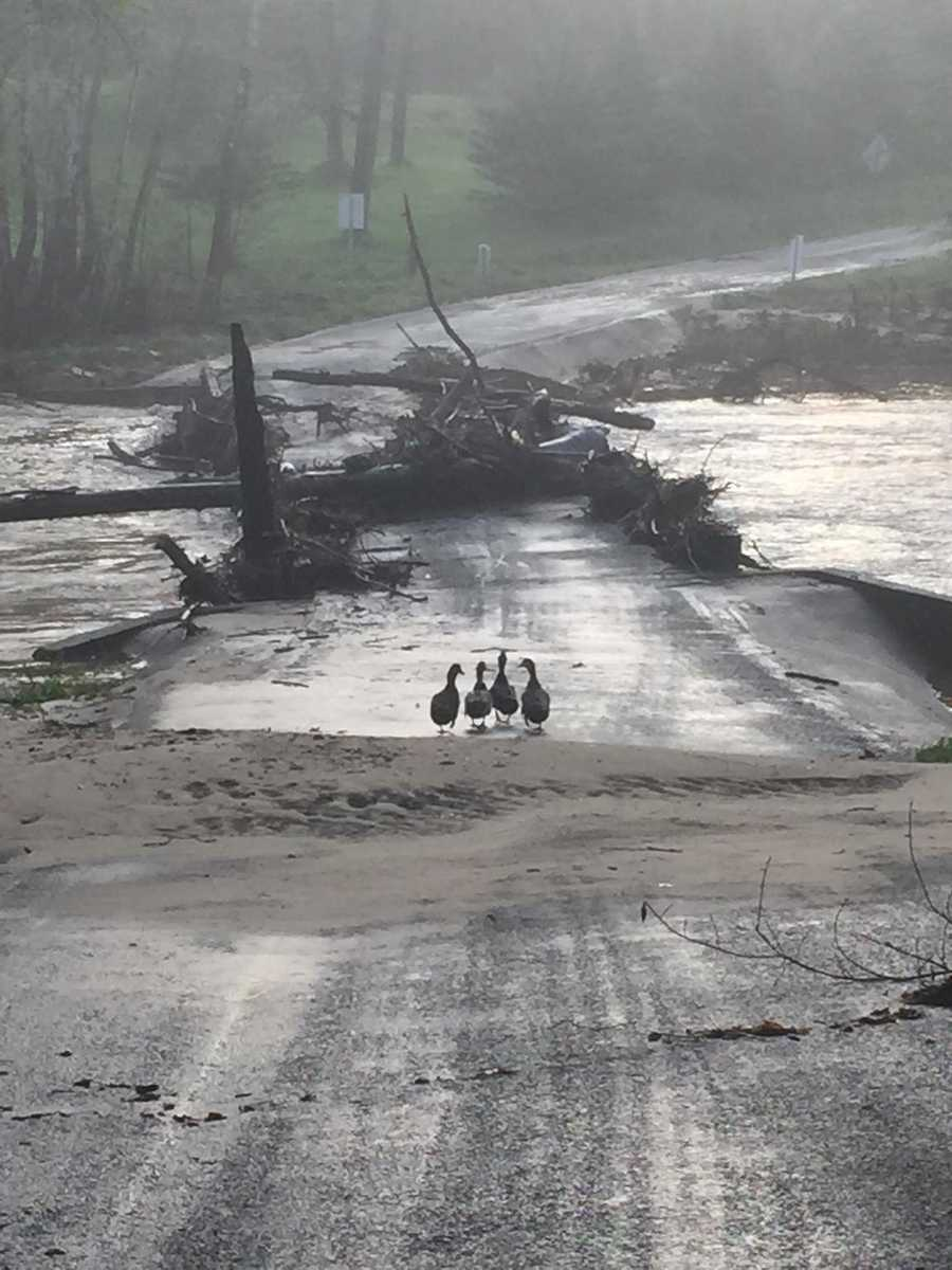 Arbor Grove Church Road bridge, Wilkes County
