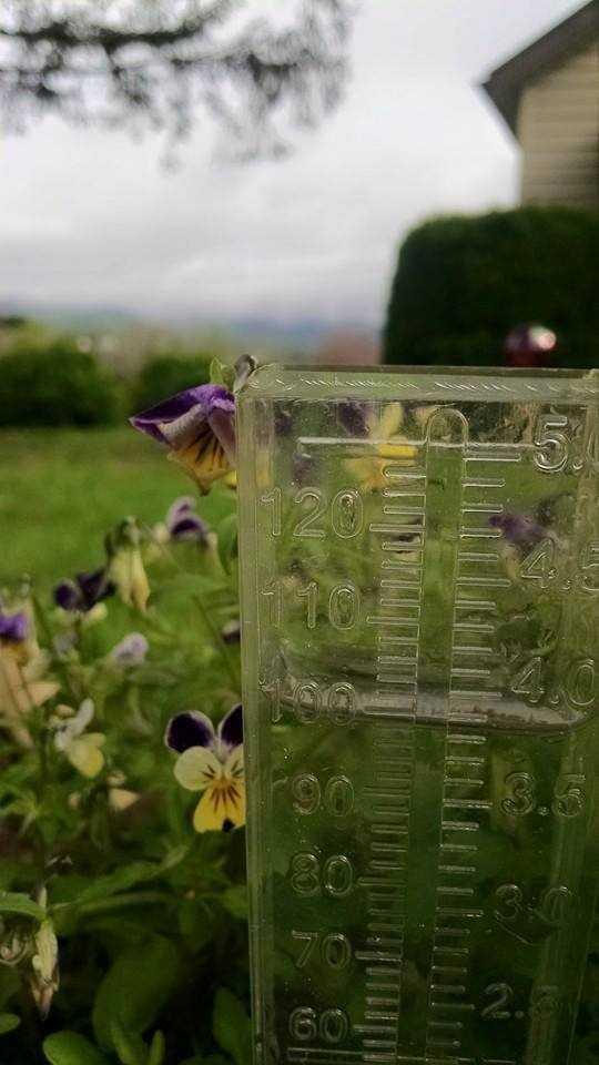 Rain gauge in Lowgap