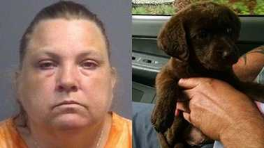 Left: Cindy Wilson. Right: Puppy stolen from Rowan County Animal Control.