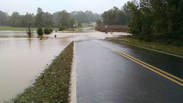 Flooding on Wolf Island Road near Reidsville