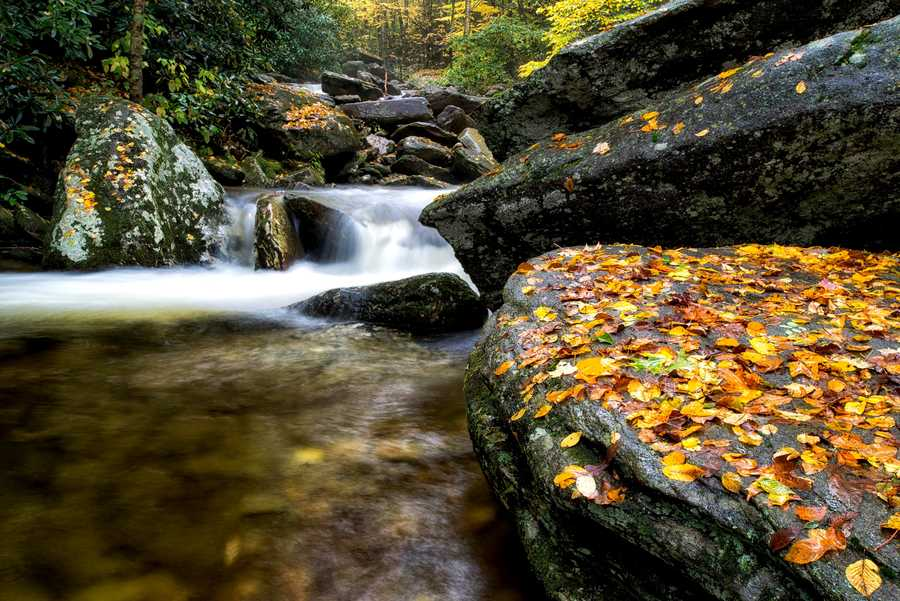 Rains brought on from Hurricane Joaquin create a colorful fall cascade on Boone Fork Creek, located on the Tanawha Trail along the Blue Ridge Parkway.