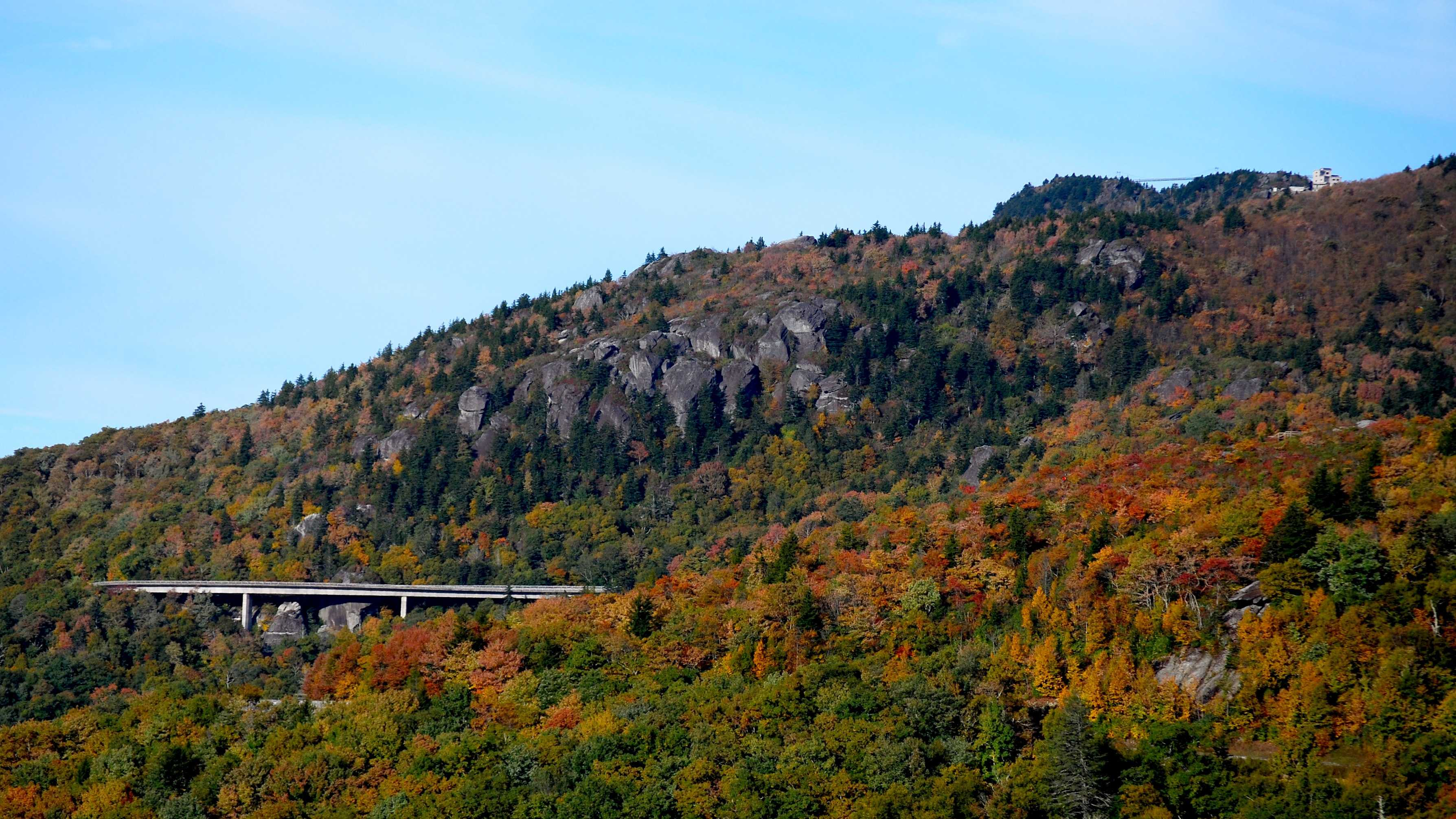 From this vantage point on the Blue Ridge Parkway, featuring the Linn Cove Viaduct and Grandfather Mountain's Mile High Swinging Bridge and Top Shop, viewers can observe the stratifying effect elevation has on fall color.