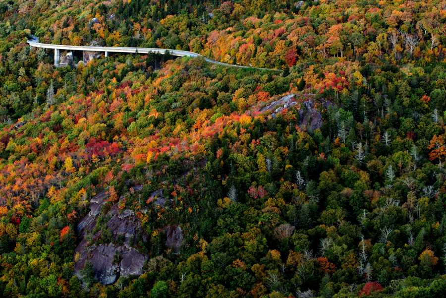 Oct. 7: The iconic Linn Cove Viaduct winds through a High Country autumn. With many leaves having already changed on Grandfather Mountain, experts are expecting this weekend to offer leaf-lookers some prime viewing.