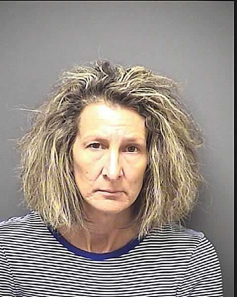 Mia Ryan:  50, Charged with larceny, and shoplifting.