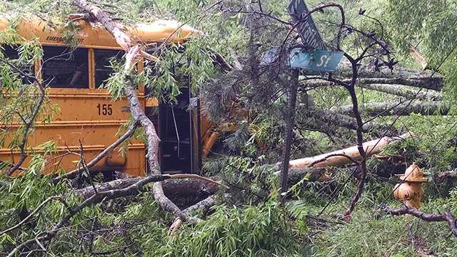 Seven students were on a Winston-Salem/Forsyth County school bus when it was hit by a tree on Stratford Road near Clemmons.