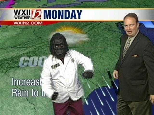 A gorilla shows up in Austin's weather segment...