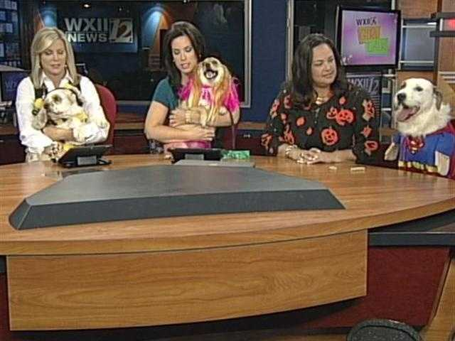 The WXII12 Morning Team brought their dogs in to show off their Halloween Costumes...