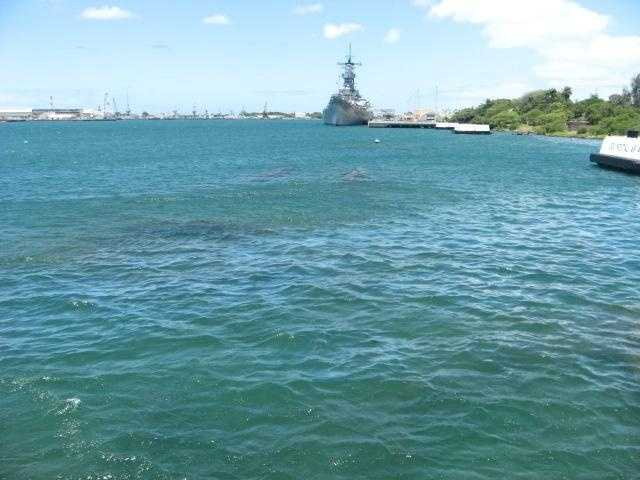 The U.S.S. Arizona Memorial Museum (Oahu, Hawaii) has a glass bottom and windows where you can see the ghost ship in the waters.