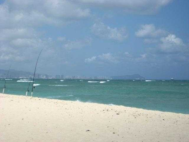 Guests or the guys in the wedding party might want to go fishing as an excursion for a day on the beach. Boats can also be rented for the day as a bachelor party.