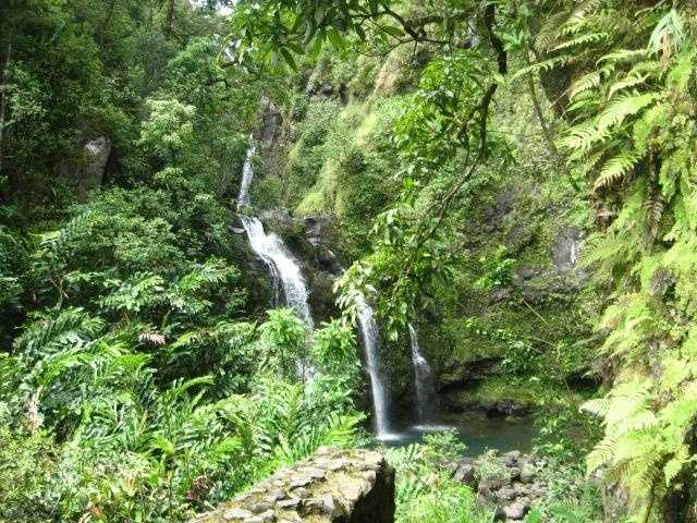 Beautiful waterfalls and tropical forest to hike thru and maybe enjoy a picnic.