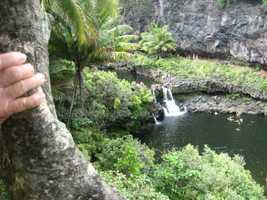 Beautiful water falls and landscapes to enjoy. The wedding guests have plenty to do on this trip.