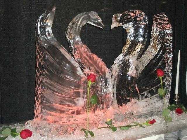 These swans are beautiful for a typical Winter Themed Wedding.