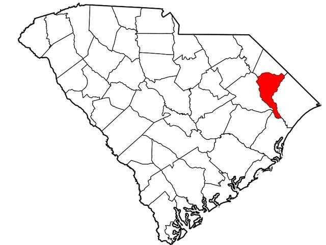 Marion Co. -- 9.3%