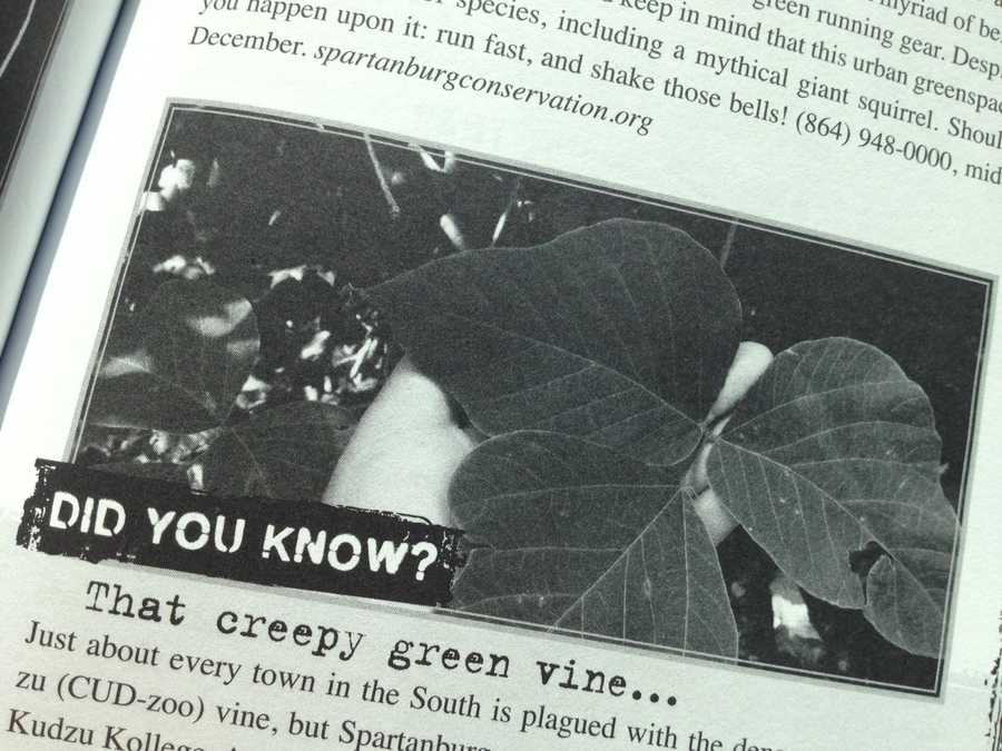 Did you know you could attend Kudzu Kollege in Spartanburg County?