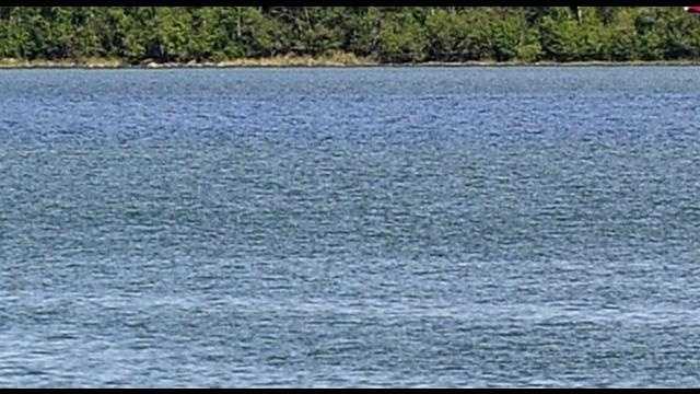 lake generic