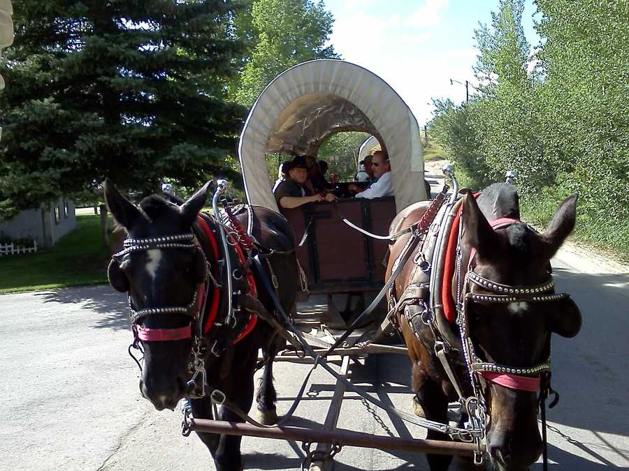Riding to dinner in Jackson Hole