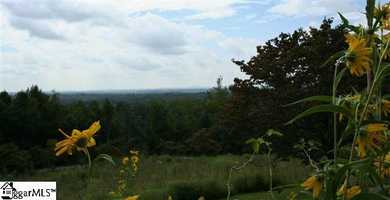 The asking price for the Paris Mountain estate is $989,000. It is listed on realtor.com.