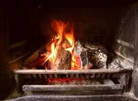Never burn any part of the tree in a wood stove or fireplace.