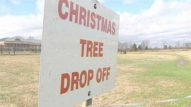 The Corps of Engineers will be collecting Christmas trees to use as fish attracters in Lake Hartwell.